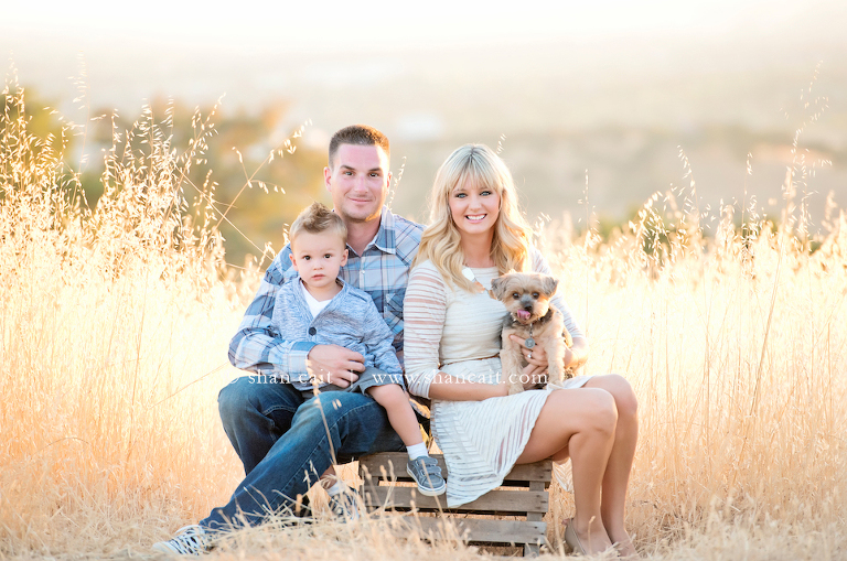 Beautiful folsom family portrait photography 2